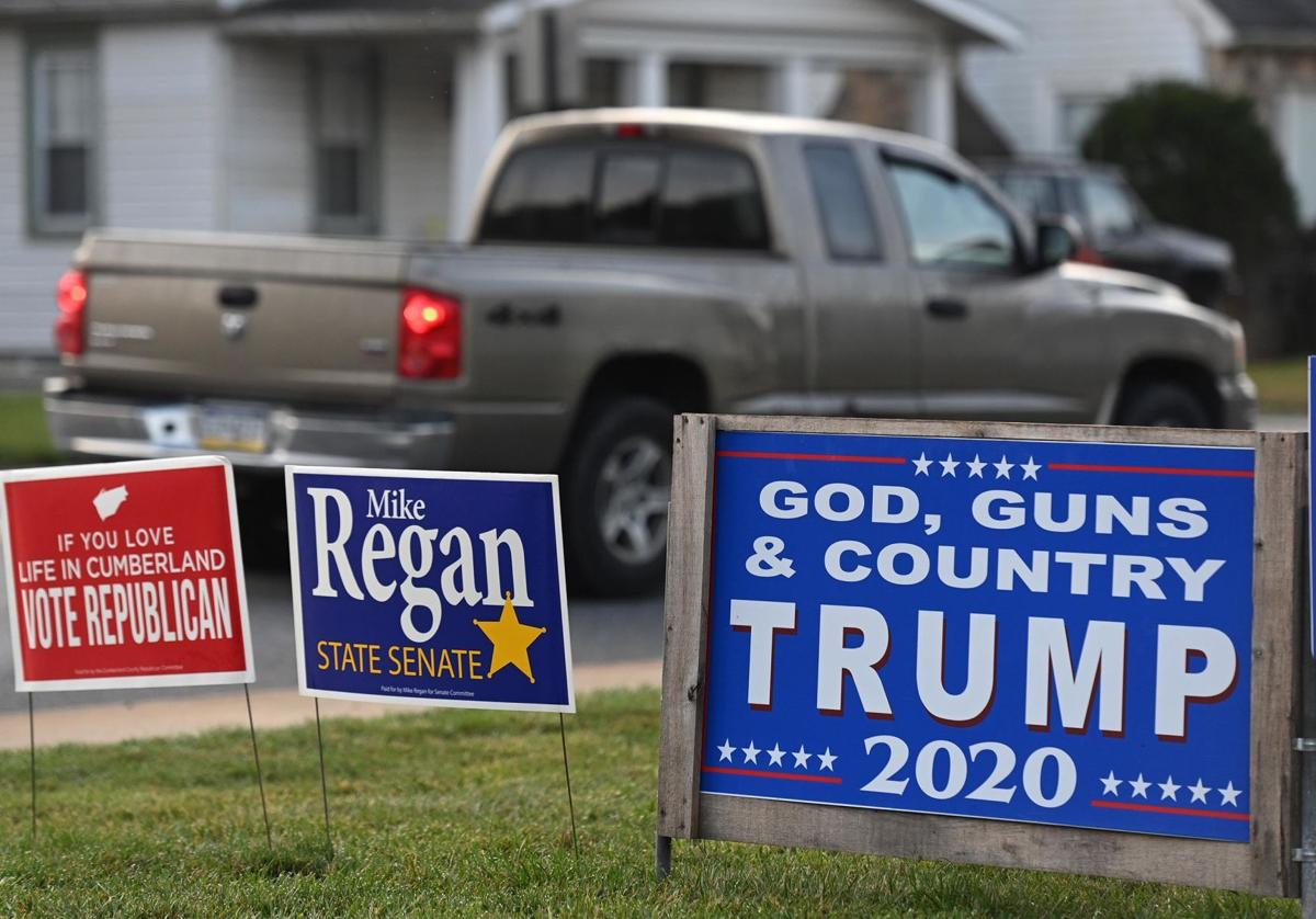 Political Signs 2