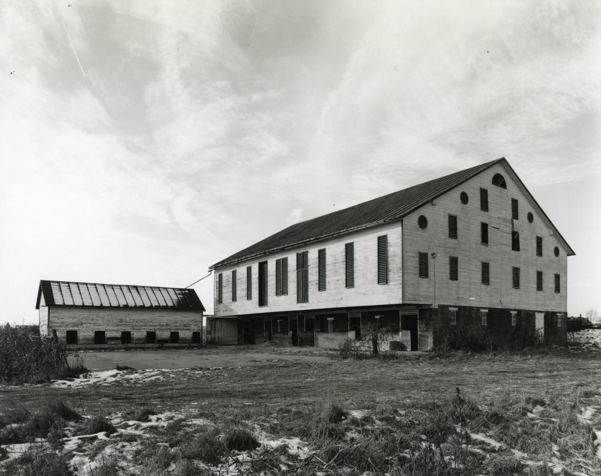 Watts Model Farm