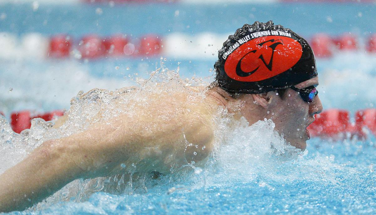 Swimming: Parkland at Cumberland Valley (copy)