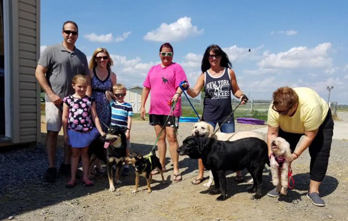 East Pennsboro dogs