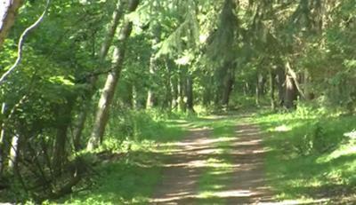 Detweiler Park