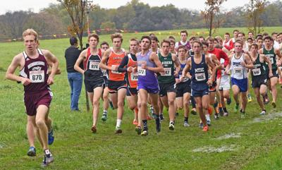 District 3 Cross Country (copy)