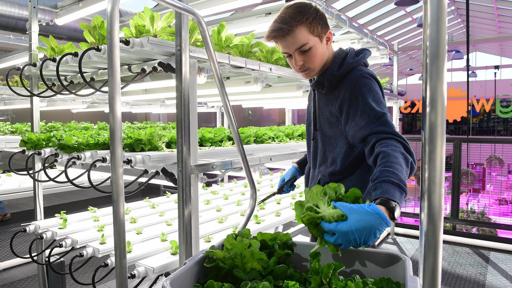 AgWorks takes students to the future of agriculture