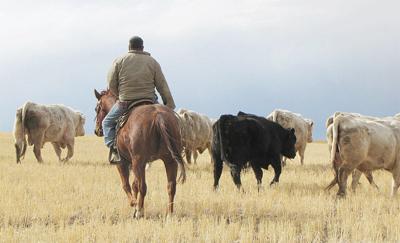 Wellman Ranch