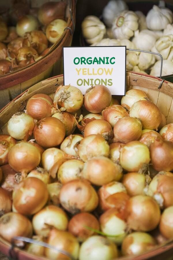 Growings On: Researchers seeking consistently sweet Vidalia onions