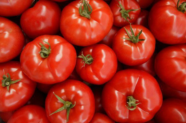 Growings On: Tomato troubles