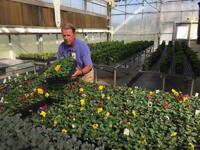 GNTC hosts Spring Plant Sale Tuesday through Thursday