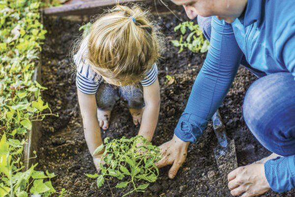 Growings On: Tips on maintaining your garden after a trying spring weather-wise