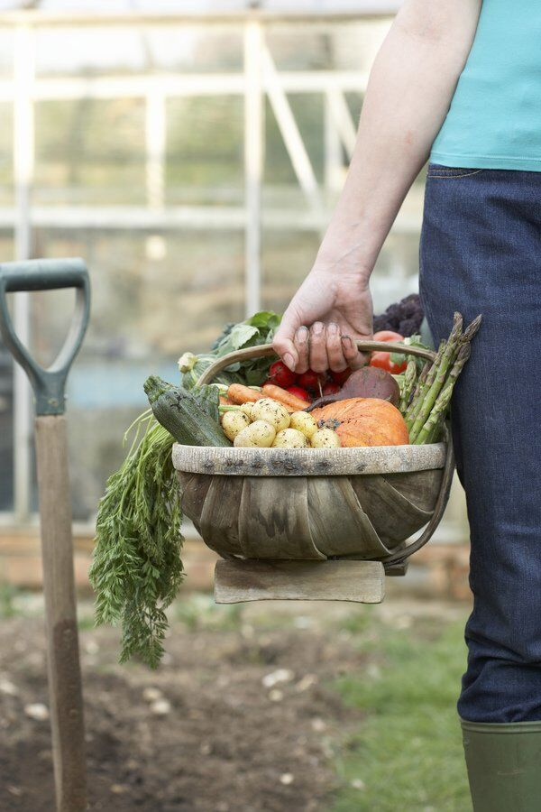 Growings On: Seed savers help preserve our state's rich tradition of gardening