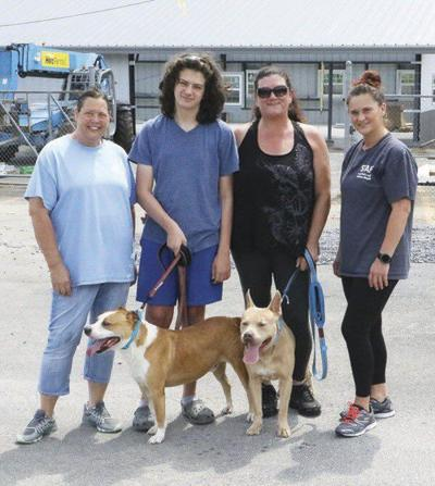 Whitfield County Animal Shelter houses pets of Hurricane Ida victims
