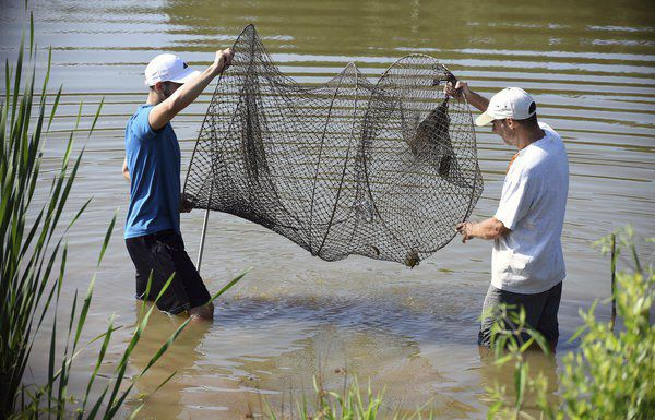 'A real gem': Wetland at Lakeshore Park an 'outdoor classroom'