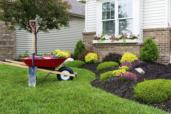 Growings On: In the summertime, be wary of problems that can wreck your lawn