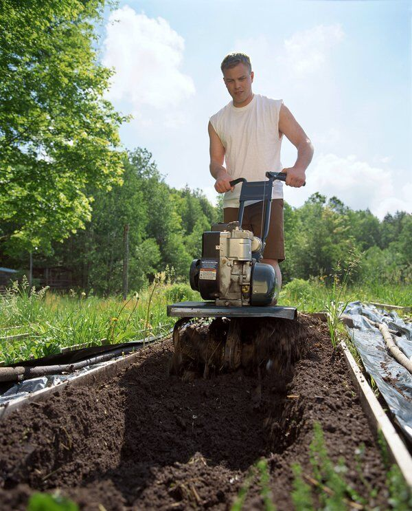 Growings On: Healthy soil is key for a productive garden
