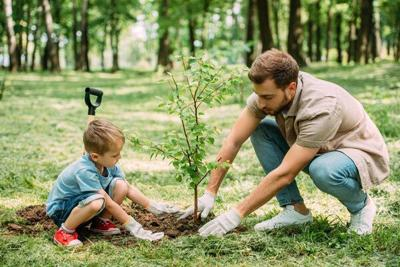 Call 811 before planting trees this Earth Day and Arbor Day