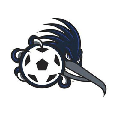 Special season for Dalton State men's soccer ends with loss in NAIA first round
