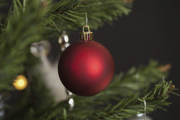 Growings On: Be sure to recycle your Christmas tree, electronics on Jan. 9 in Dalton