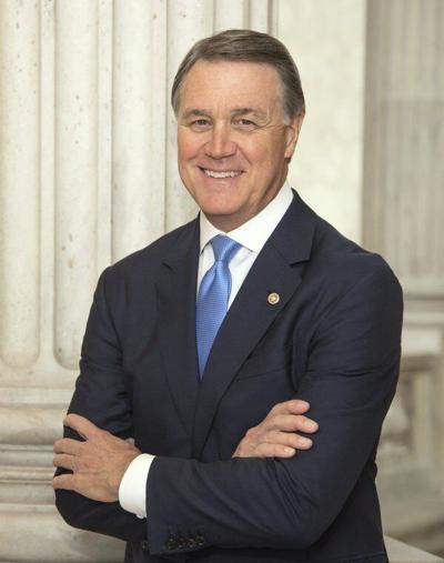Perdue won't make 2022 Senate bid