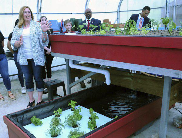 Aquaponics garden at youth detention center offers 'new horizons'