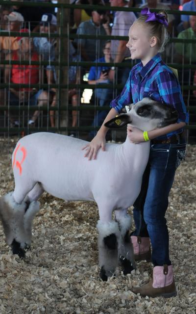 Greenup County Fair 4-H/FFA Livestock Sale