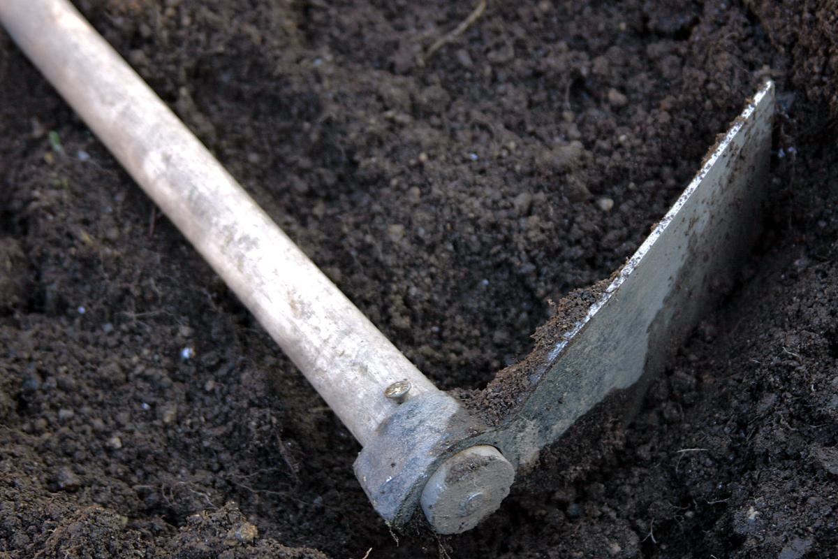 Gardening 101: Garden Soil