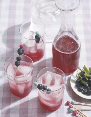 blueberryshrub0825