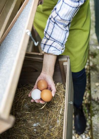 Hope emerges for future of family farms