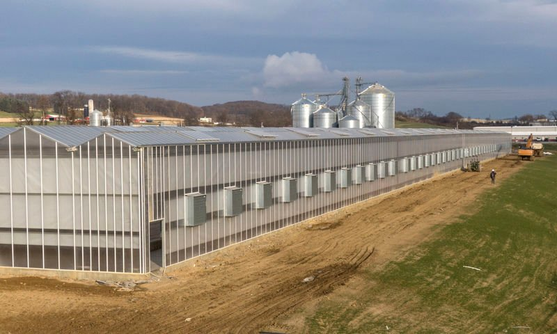 Hydroponic greenhouse in Penn Township hiring 20 employees