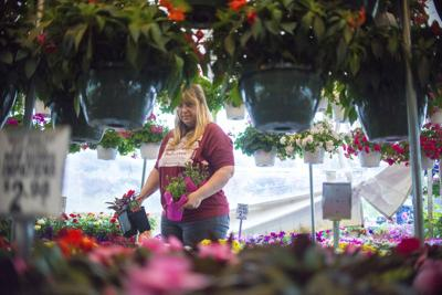 Valley's summer flower season kicks off for Mother's Day
