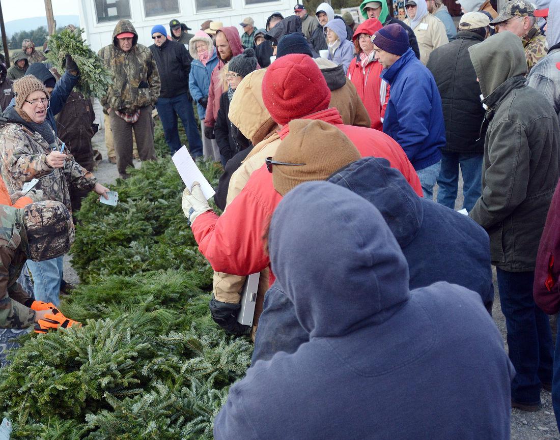 Buffalo Valley Produce Auction's Christmas Tree Auction