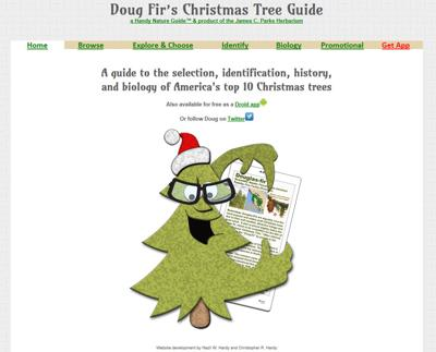 Online Christmas Tree Guide