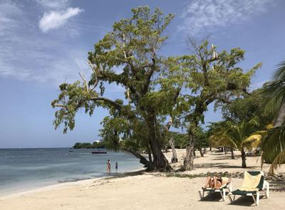 Travel rules complicate trip to Caribbean beach Jamaica travel restrictions: What potential visitors need to know