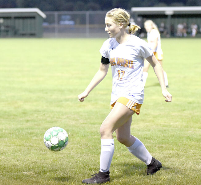 Danville shut out on road by Hughesville