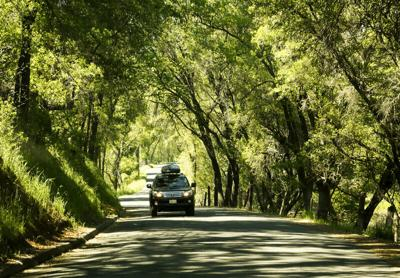 Tips for planning fall road trips