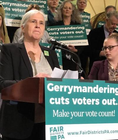 100 protesters call for gerrymandering fixes