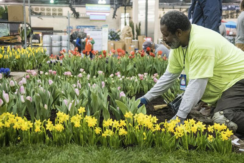 Selinsgrove man helps run biggest flower show in world