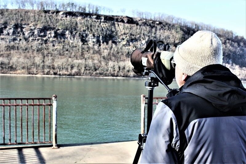Valley birdwatchers spot two rare Pa. visitors