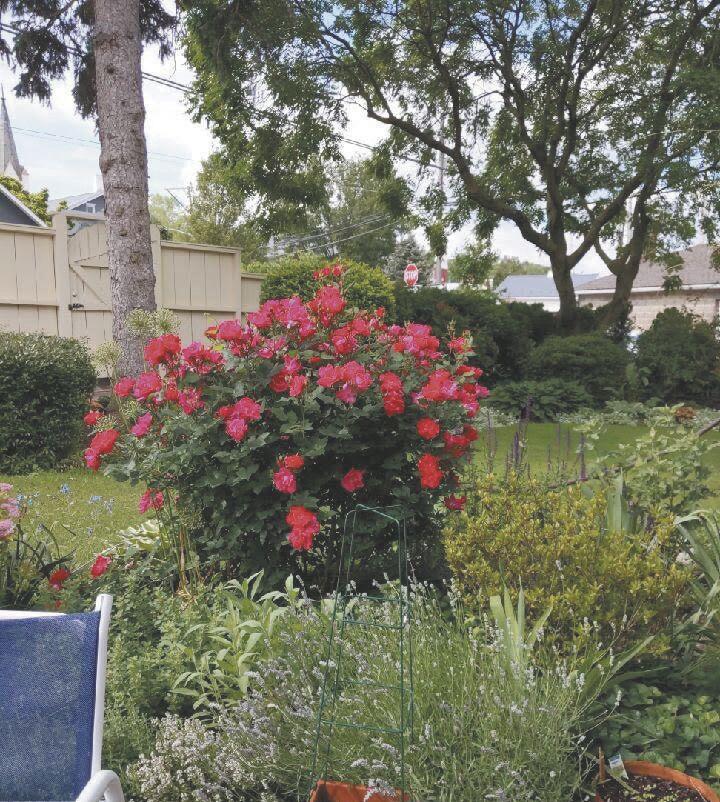 Garden, Ritter House