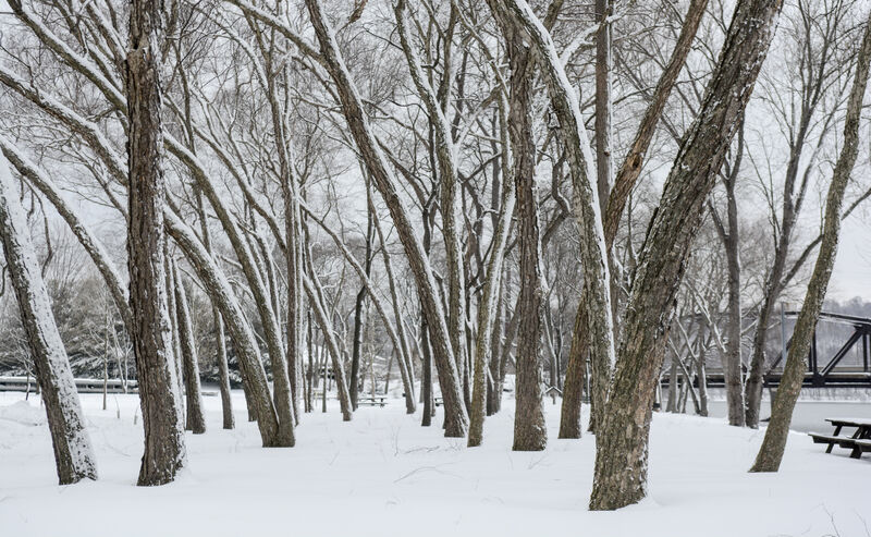 Meteorologist: Slight warmup expected to loosen winter's hold on Valley