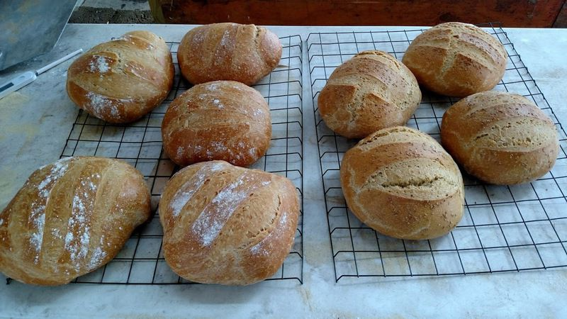 Artisan breathes new life into old-world bread