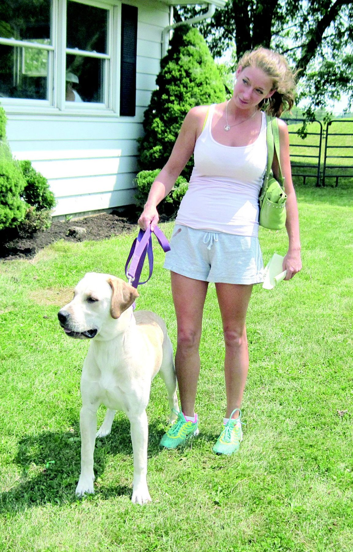 SPCA vaccine clinic a hit with pets, owners   News