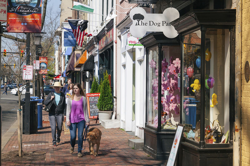 Alexandria has history, vibrancy, happy dogs