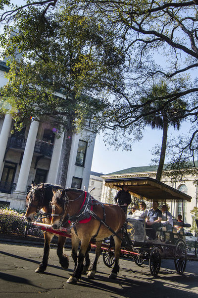 Gentle manners, strong cocktails, historic homes in Savannah