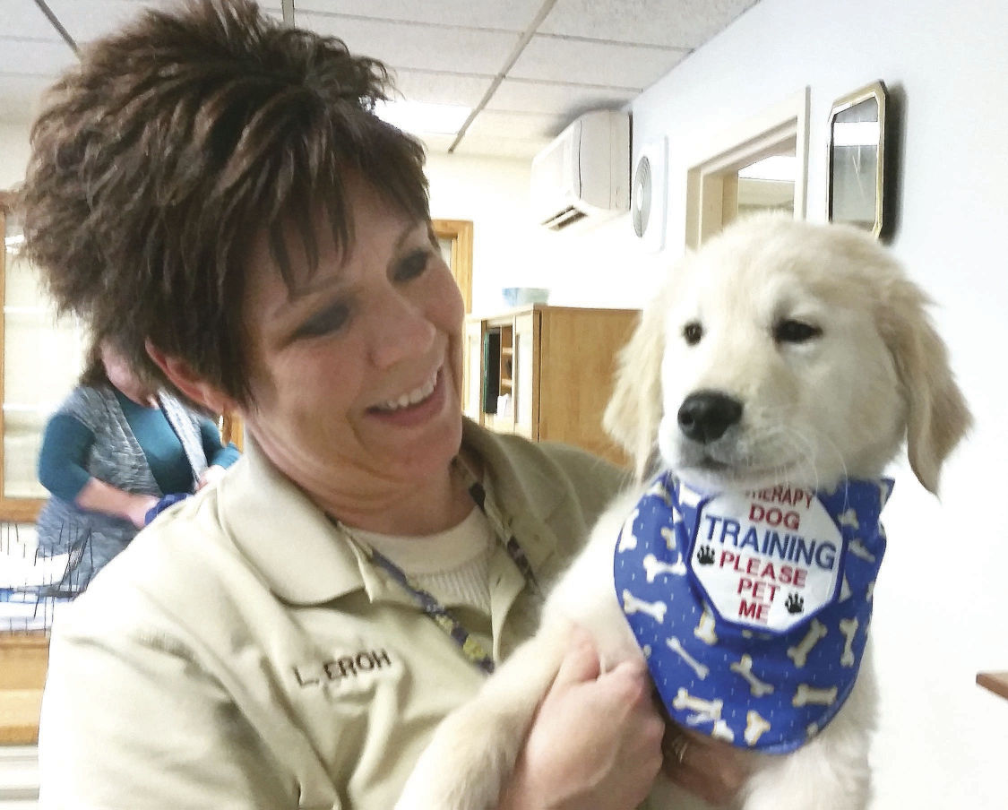Pet project for Snyder County court | News | dailyitem com