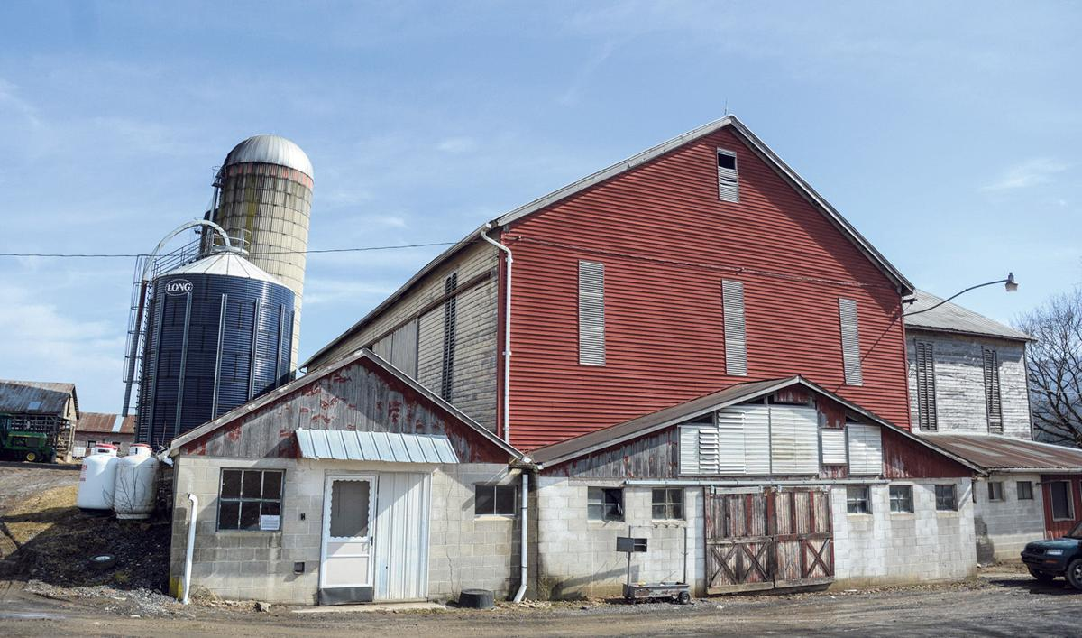 Dropping milk prices jeopardize dairy operations in U.S. and Valley