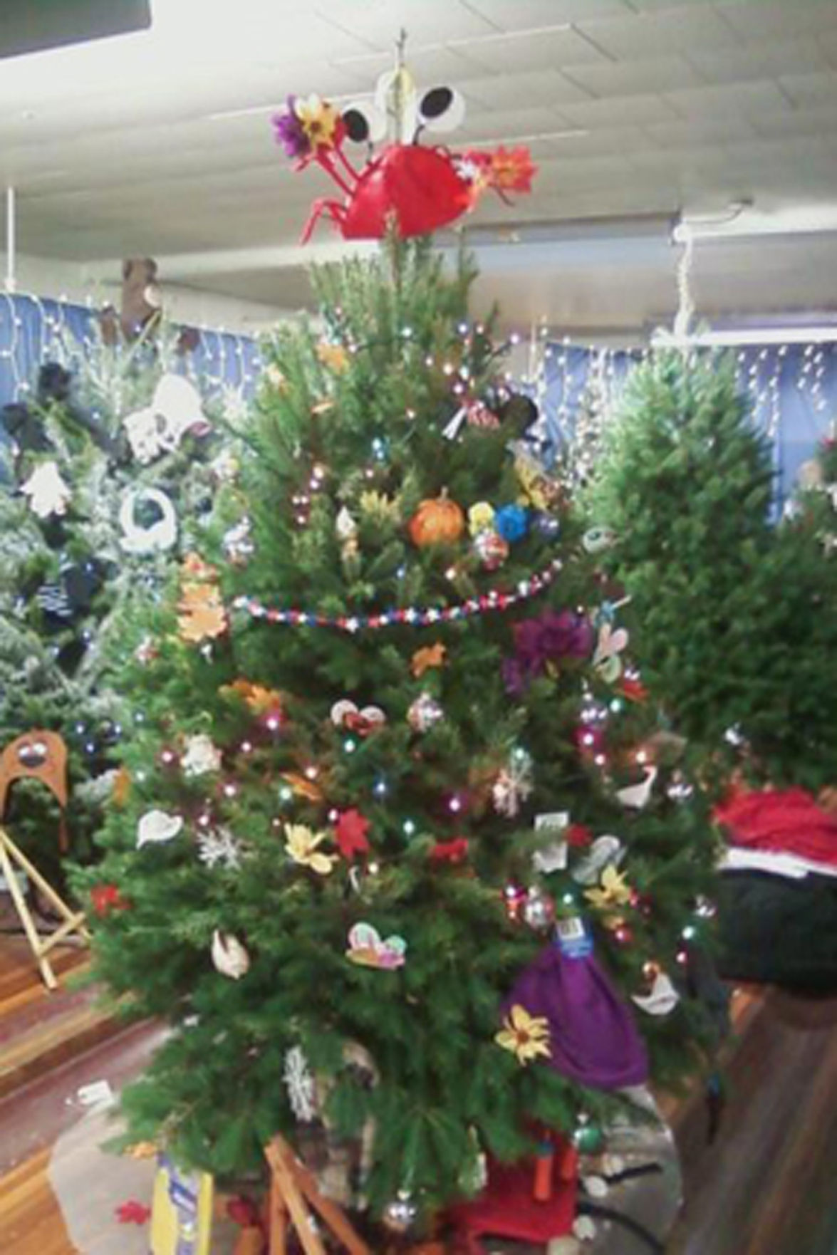 Students decorate tree for family in need