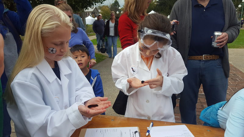 Woolly worms, unPAved energize Lewisburg Fall Festival