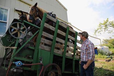 Smith visits Mennonite Market