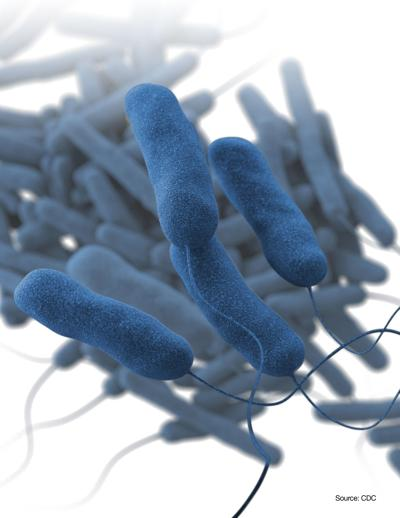 Midwest Learning Center finds Legionella bacteria in water system