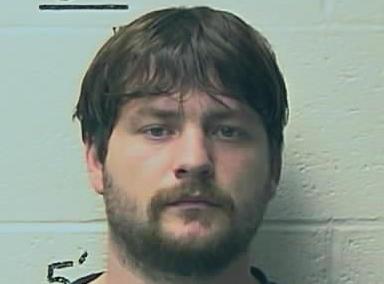 Leadwood man guilty of statutory sodomy