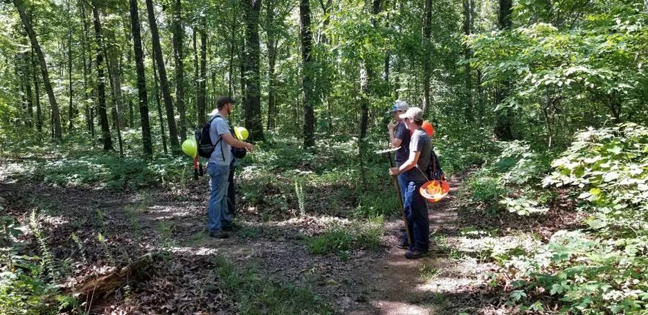 Mark Twain National Forest seeking youth for summer jobs in Doniphan and Potosi